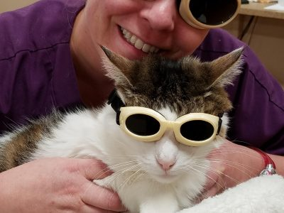 Laser Therapy - 3
